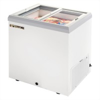 TRUE TFM-29FL glass lid horizontal freezer