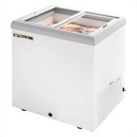 TRUE TFM-29FL glass lid horizontal freezer
